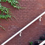 outdoor brick stairs going up along brick wall with green vines